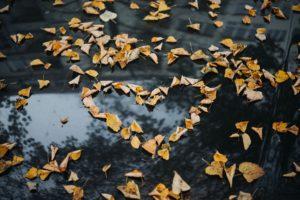 Blaski i cienie miłości: od euforii do obowiązku @ al. Papieża Jana Pawła II 8